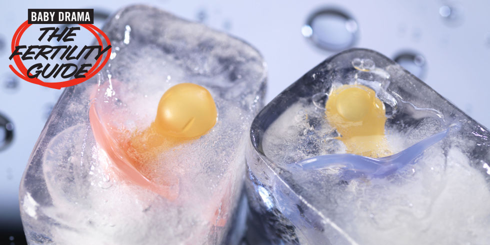Freezing Your Eggs Pros and Cons - How to Freeze Your Eggs