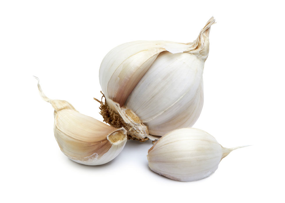 Garlic will start to sprout in the fridge eventually. It may also get rubbery and moldy, so it's best to keep in a cool, dry place.