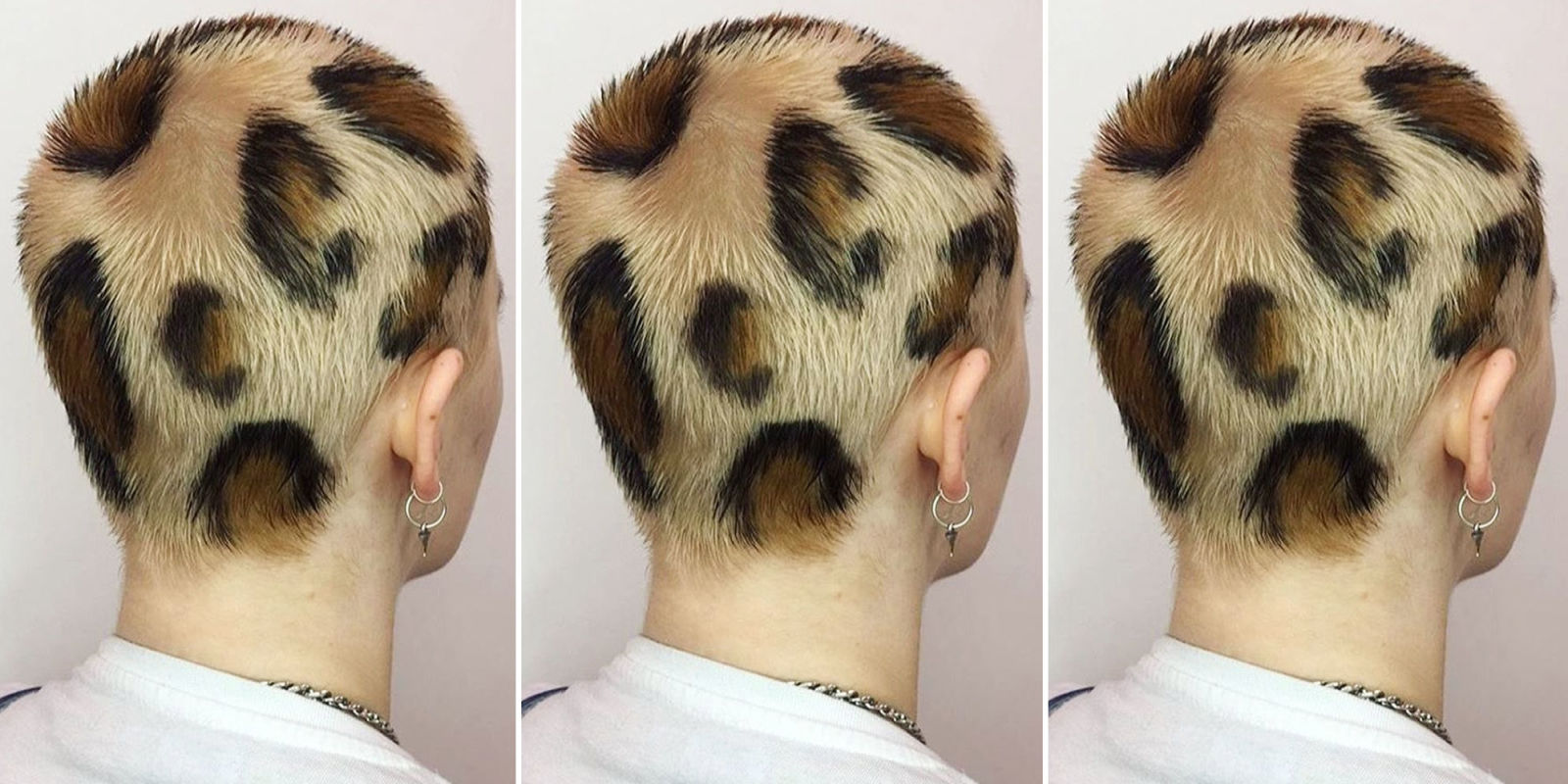Leopard Print Hair Leopard Print Dye Job