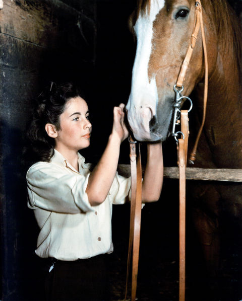 Entire books have been written about the feminist implications of Elizabeth's Taylor's career—both on and off the silver screen. In one of her first films ever, the actress plays Velvet Brown, a young girl who wants to buck societal expectations by becoming a horse jockey. The film passes in a beautiful scene where Velvet's mother Edwina talks about her own girlhood dreams.
