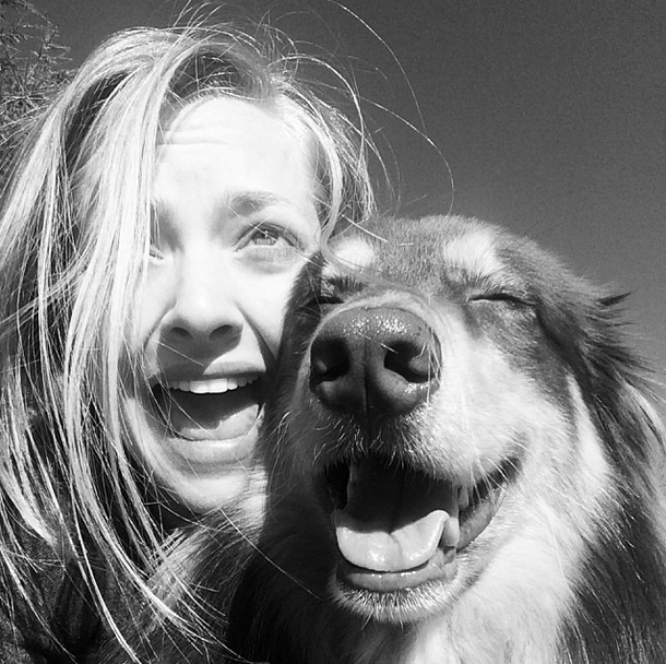 Amanda Seyfried Dog In...